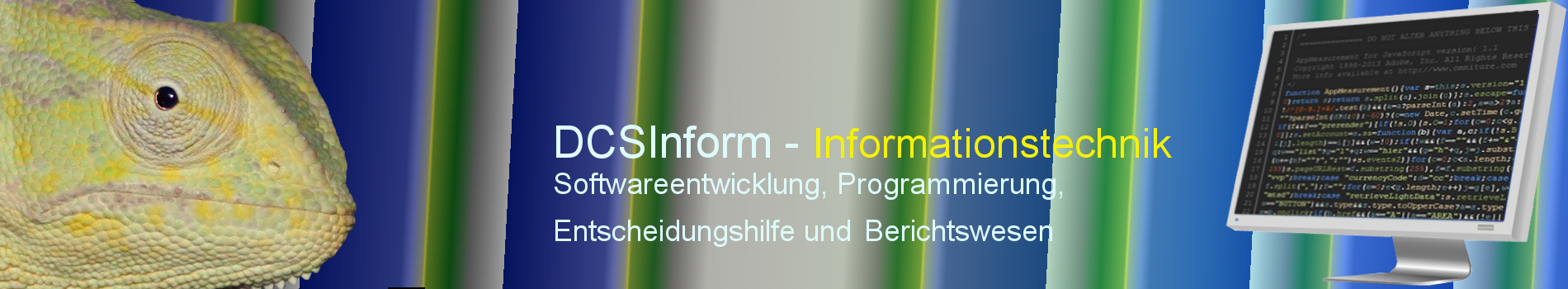 DCSInform - Informationstechnik