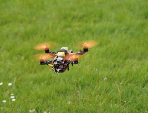 Raubtieren gegen Drohnen